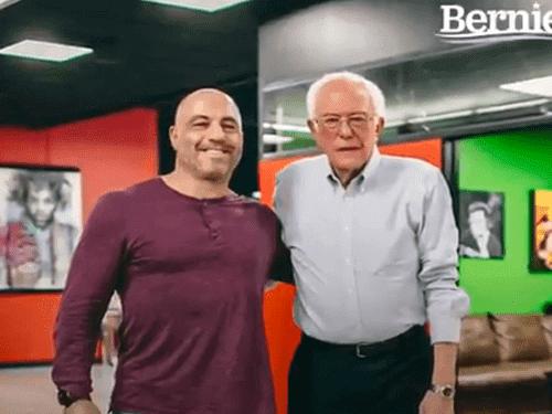 Bernie-sanders-refferal-from-joe-rogan