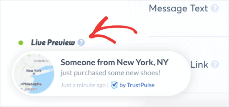 Live-Preview-of-campaign-in-TrustPulse