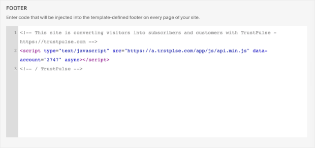 Footer section of Squarespace