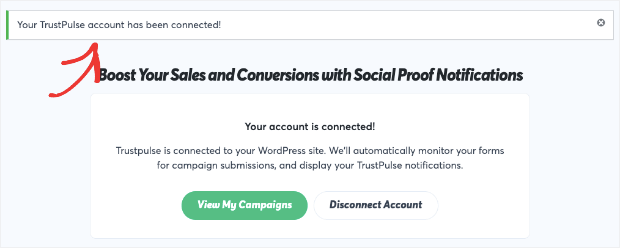 Campaign connected with WordPress