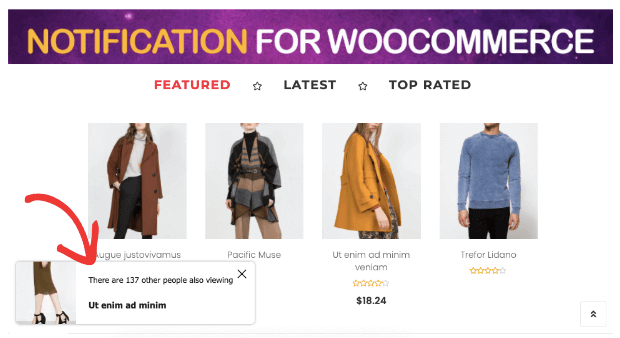 notifcations for woocommerce