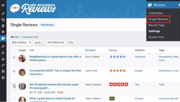 wp reviews single review