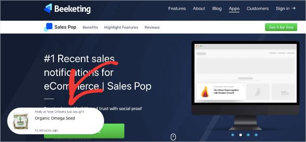 sales pop notifications by beeketing