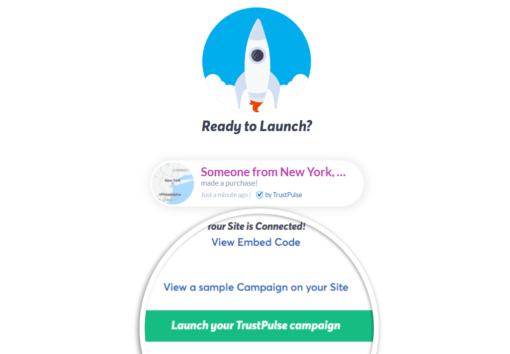 Click Launch your campaign to begin capturing purchase notifications