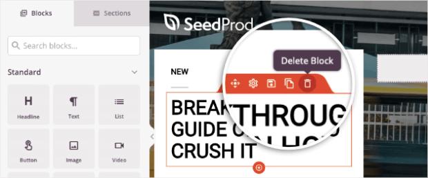 delete block option seedprod