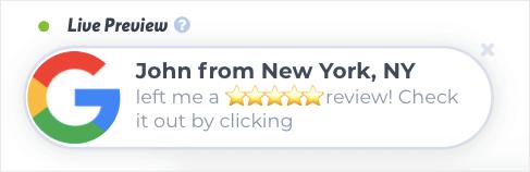 google my business trustpulse review
