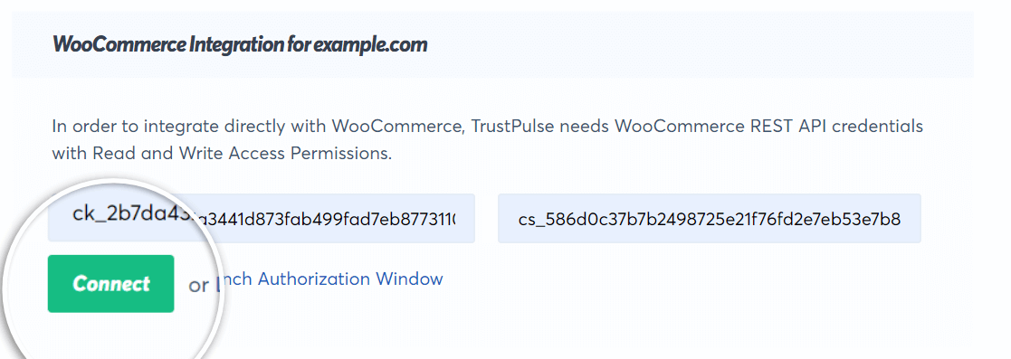 add your keys and click on connect